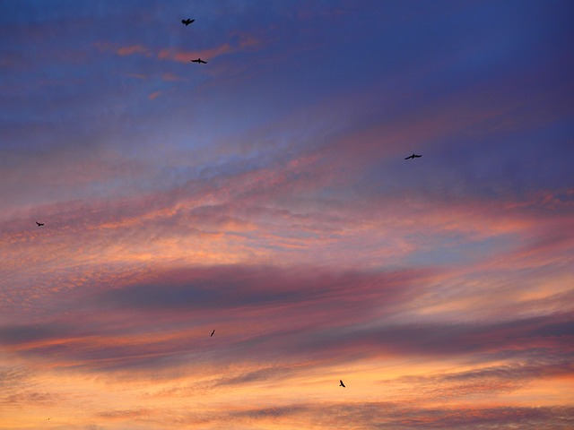 sunset-795709_640